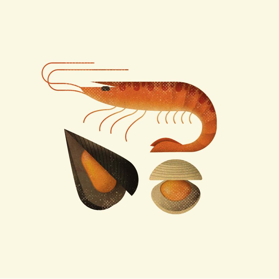 Diseño e ilustración cádiz
