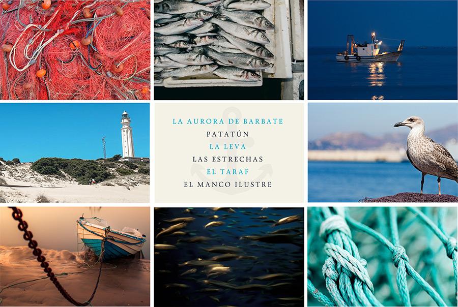 Teatro de la mar Diputación de Cádiz