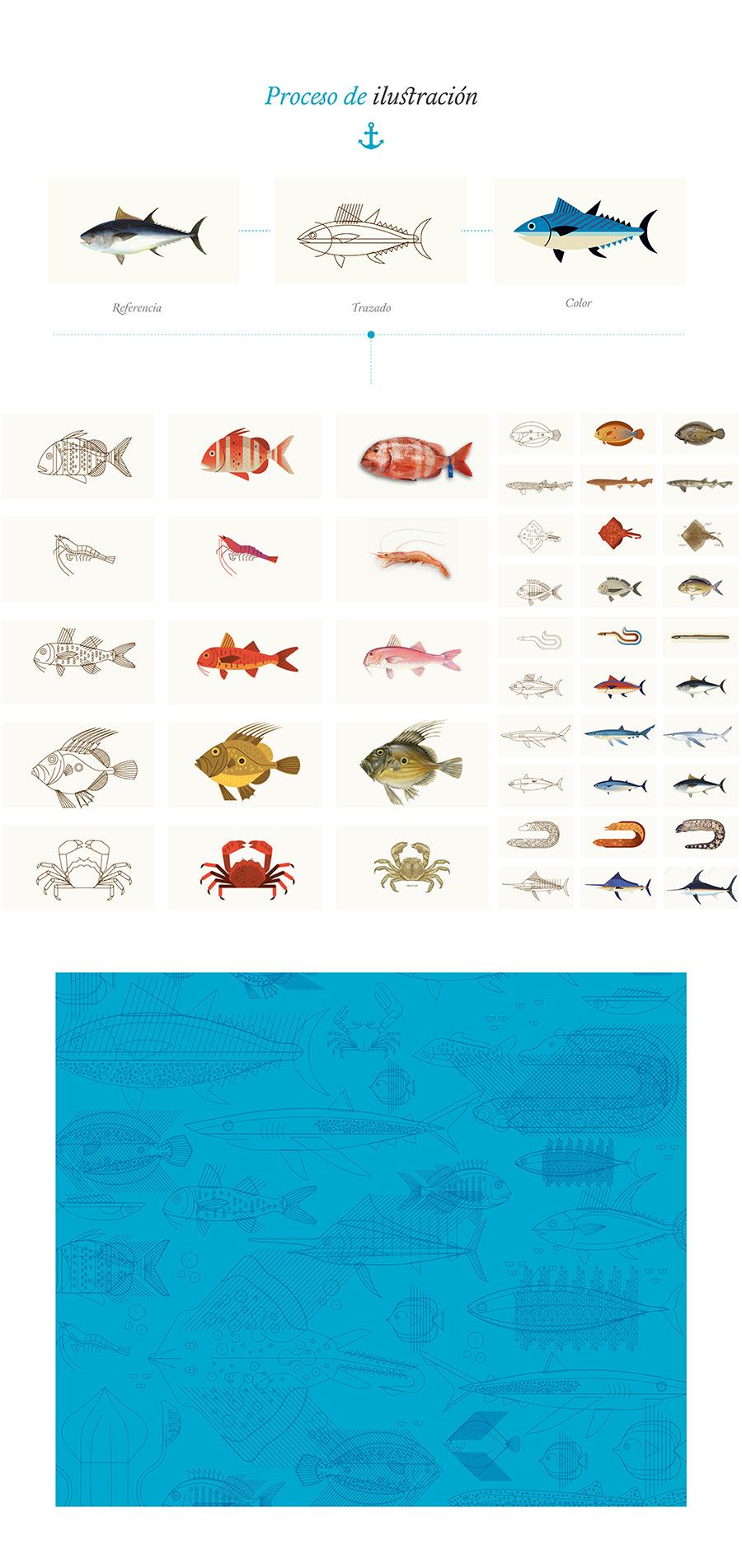 Proceso ilustración peces